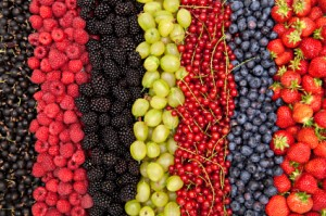 delicious fresh berries in a row
